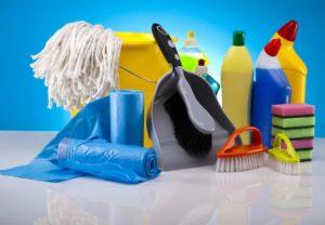 gruntowne sprzątanie po dezynsekcji pluskiew konieczne