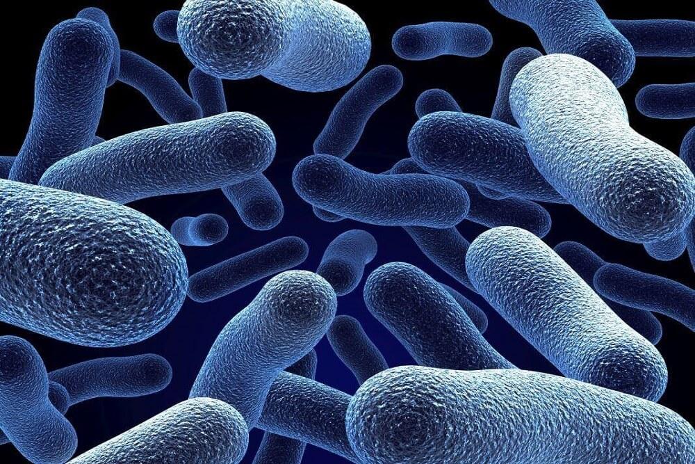 dezynfekcja mikrobów