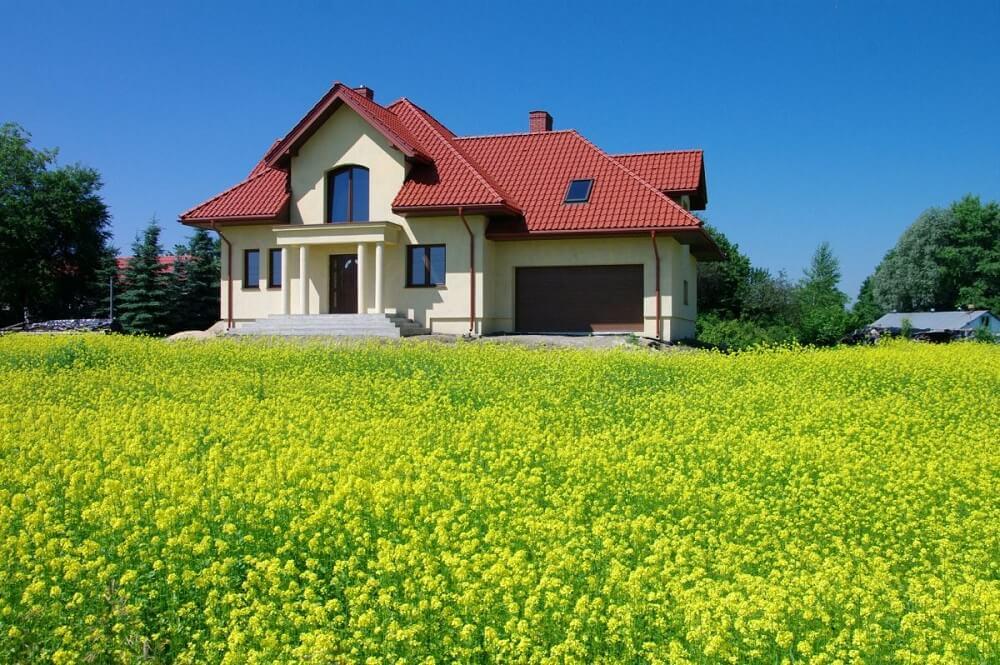 dom z usuniętymi gniazdami szerszeni