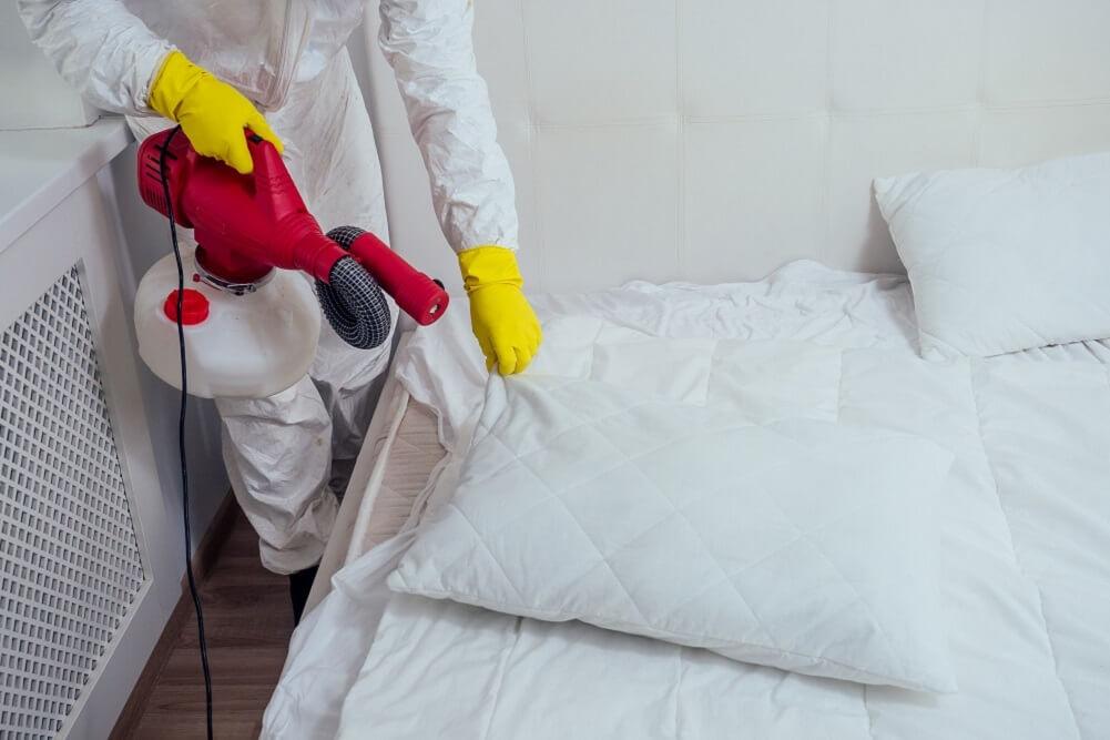 dezynfekcja łóżka w mieszkaniu